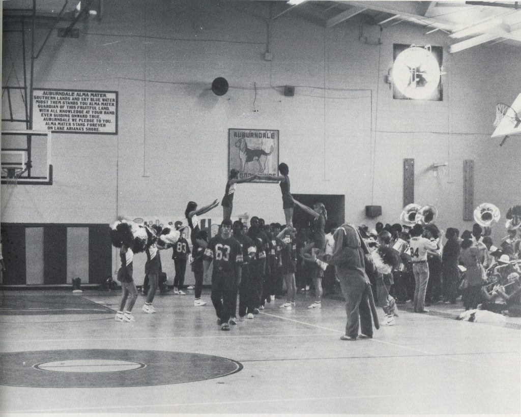 The still-present alma mater and bloodhound signs on the gym wall, 1983