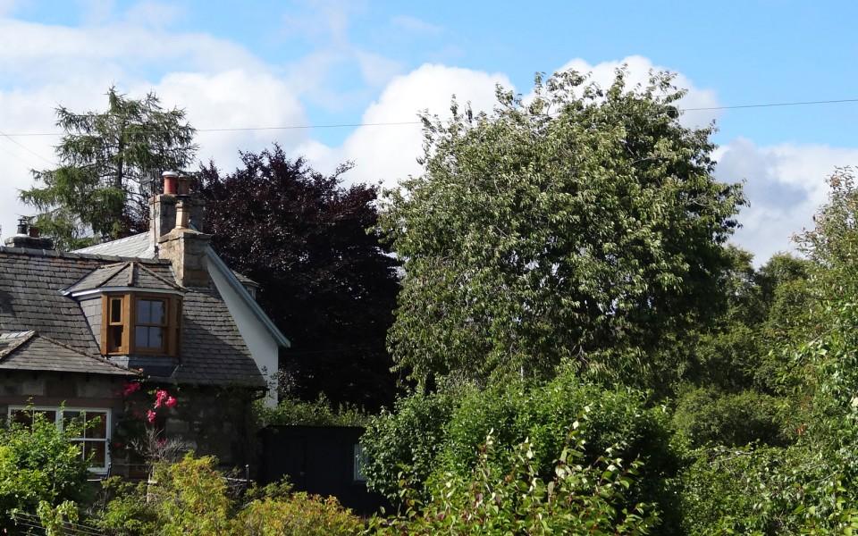 Auchendryne Cottage Photo taken from Linn O Dee Road