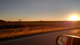 Sunrise over wheat at 60 mph