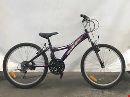 Mongoose Pro Stormer 21 Speed Mountain Bike