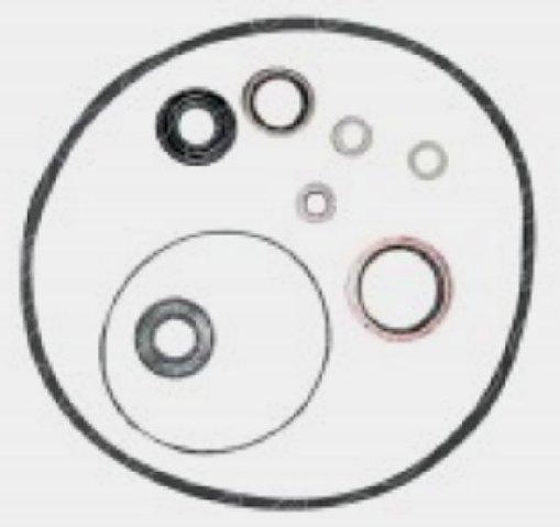 1810529M91 Massey Ferguson Power Steering Pump Seal Kit
