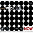 Cory Weeds – As Of Now – Cellar Live