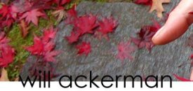 Will Ackerman, Home Page