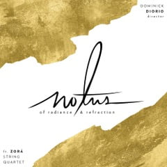 Of Radiance and Refraction – NOTUS – Innova