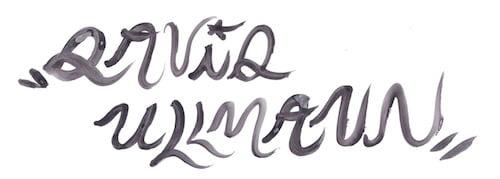 Logo David Ullmann