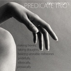 Josh SINTON Predicate Trio: Making Bones – Iluso Records