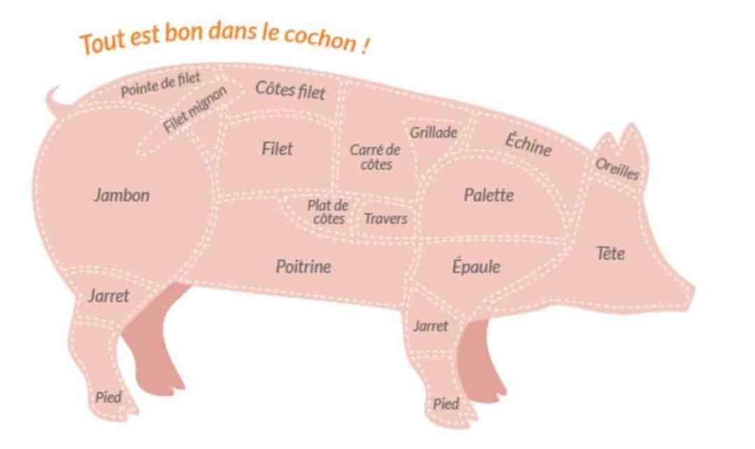 Profil porc