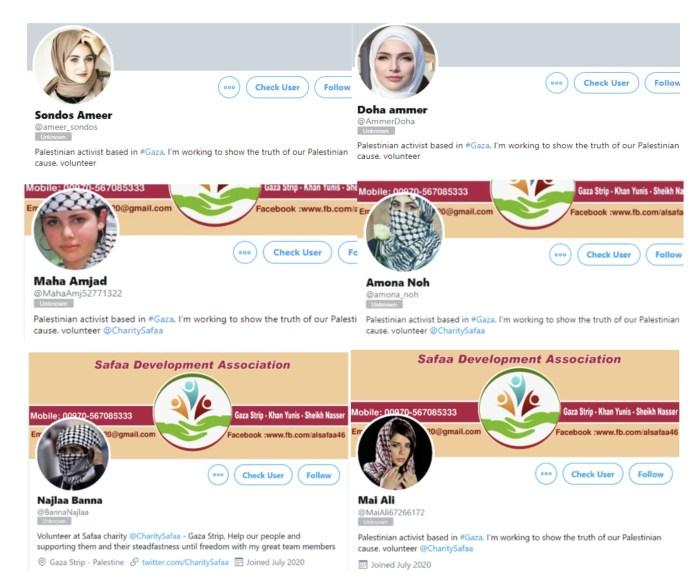 Screenshot aus der Studie zu den gefälschten Profilen. Foto zVg