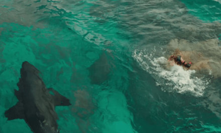 The Shallows Finally Does Something New For Shark Movies