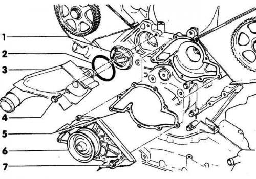 Снятие и установка термостата (Ауди А6 С4, 1994-1997