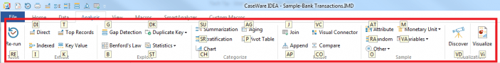 CaseWare IDEA Header Ribbon with IDEA Function Hotkeys
