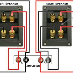 Bi Wiring Speakers Diagram Leaf Cell Labeled And What They Do How To: Wire Up Your - Audio Affair Blog