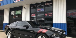 Mustang Graphics