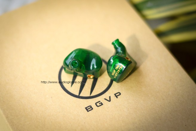 BGVP DM6