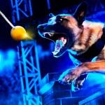 'Top Dog' – estreno 12 de marzo en BLAZE