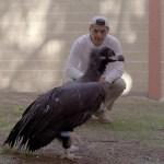 La nueva temporada de 'Wild Frank' en DMAX rendirá homenaje a Félix Rodríguez de la Fuente