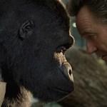 'El Magnífico Iván' – estreno 11 de septiembre en Disney+