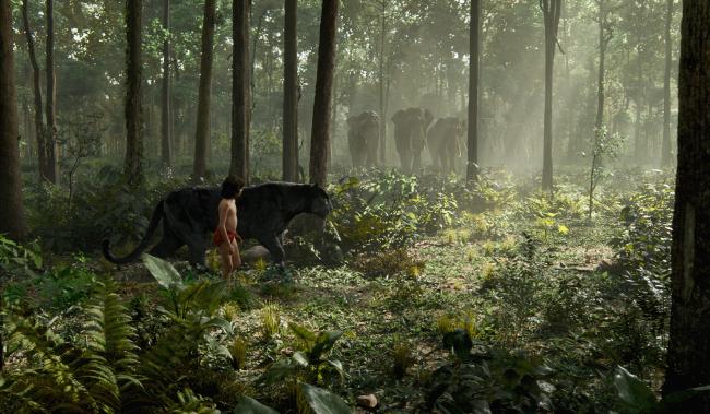 El libro de la selva Jon Favreau 1