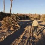 La sección documental de la Seminci programará 18 largometrajes