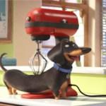 'Mascotas' – estreno en cines 5 de agosto