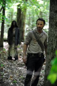 The Walking Dead T4 d