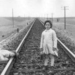 Cines Renoir rinde homenaje a Elías Querejeta con la proyección de 'El espíritu de la colmena'