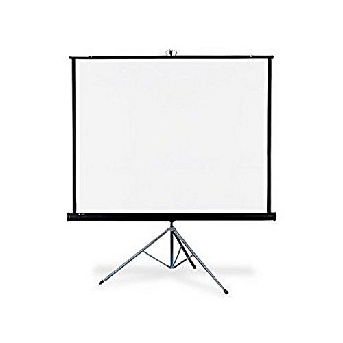 5' x 5' Tripod Screen