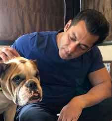 Bigg Boss 14 Salman Khan Salary: Host of the BB 14 charging per episode