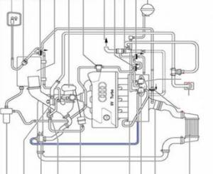 vacuum line diagram  AudiWorld Forums
