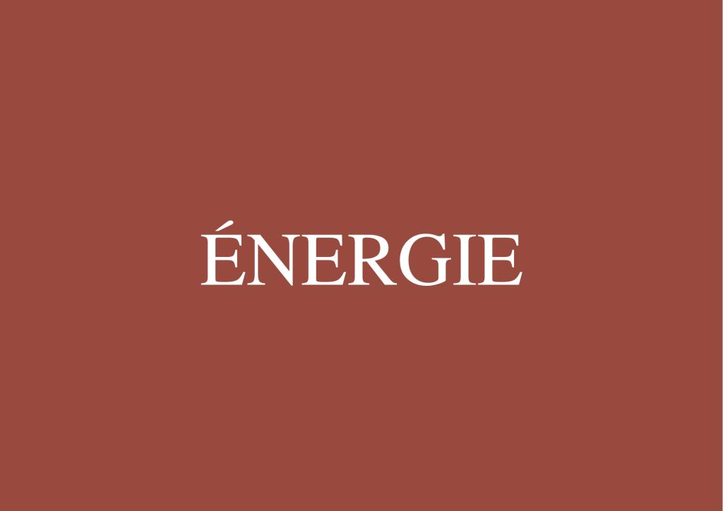 Accompagnement Énergie Naturopathe Pau