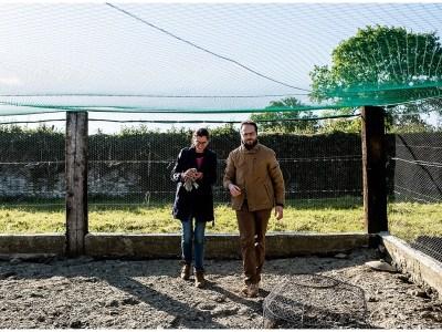 Photos de couple à la ferme – Linda et Gregory