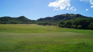 Graslandschaft beim Diamond Head