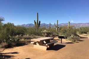 Picknickplatz im Saguaro Nationalpark