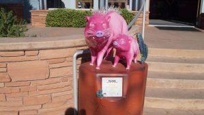 pink jeep tours sedona schwein