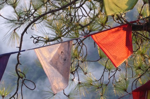Dharamsala Fahnen   aufmerksam reisen