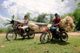 Philippinen-Abaca-Kleinbauern-Motorrad