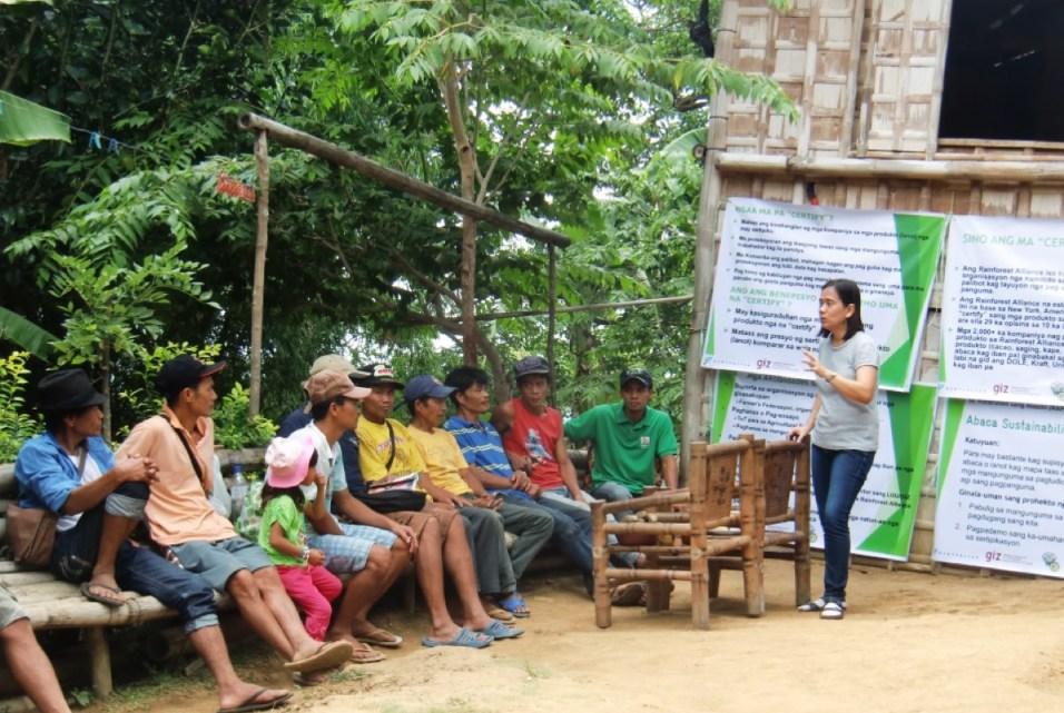Philippinen-Abaca-Schulung