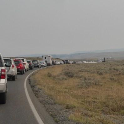 USA-Yellowstone-Nationalpark-Stau