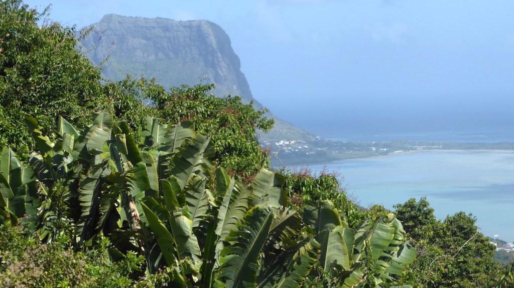 Palmen, Berg und Meer auf Mauritius