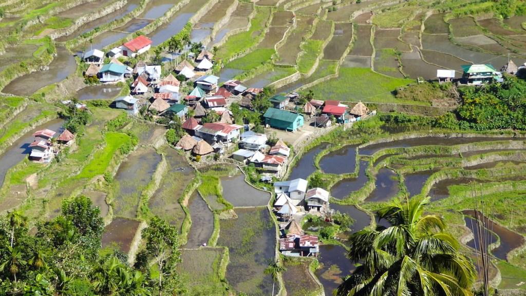 Reisterrassen von Banaue auf den Philippinen