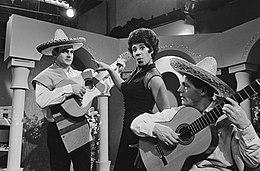 Nationaal Songfestival 1966: Oranje is the newblack