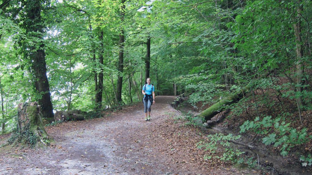 Wanderweg Seegang: der Uferweg zwischen Wallhausen und der Marienschlucht