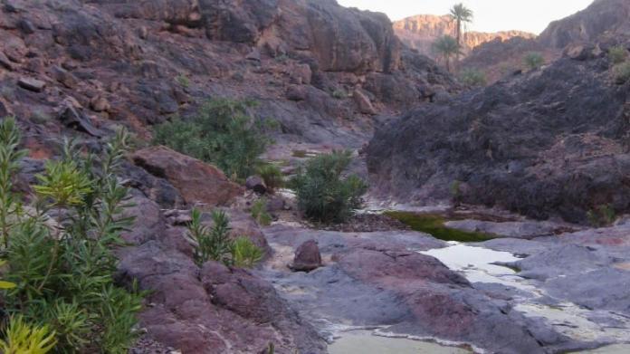 Trekking Djebel Sarhro