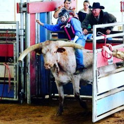 Tough Enough: Phelps works to prove herself as a bull rider