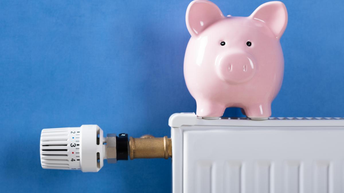 Förderung: Wie Hausbesitzer Die Kosten Für Heizung Und Strom Senken