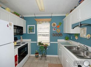 4737 Crosshaven Dr - Kitchen