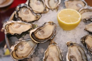 Food for improving blood to the penis oysters