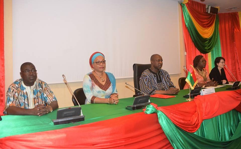 Session ordinaire du CONAP-Genre: La budgétisation sensible au genre passe en revue