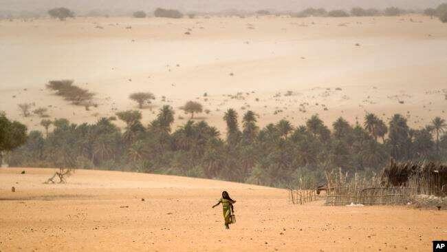 Compact With Africa 3 ans après :  L'urgence est de sécuriser l'existant siphonné par les terroristes