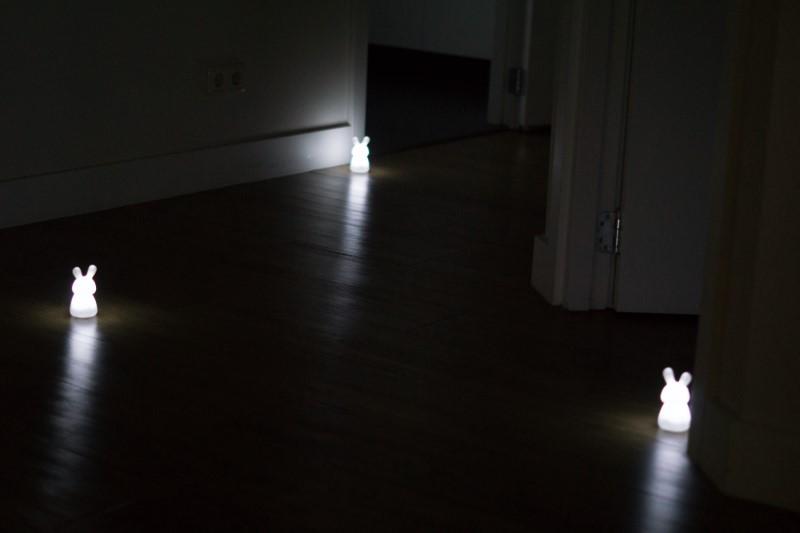 lichtpad